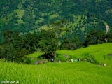 Trek začíname zelenou krajinou...
