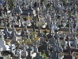 Cintorín v Quatre Bornes...