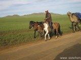 Po ceste na vidiek...