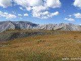 Štíty mongolských vrchov...