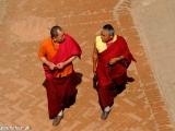 Mnísi v Budhanáte...