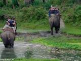 Výlet na slonoch do džungle NP Chitwan...