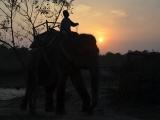 Podvečer v Chitwane...