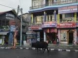 Pokhara...