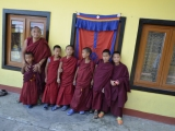 Mnísi v tibetskej utečeneckej dedinke Tashiling...