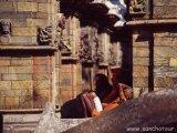 Chrám Pashupatináth - stred vesmíru nepálskych hinduistov...