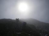 Prvé slnko v oblakoch...