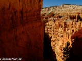 NP Bryce Canyon...