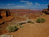 NP Canyonlands - Utah...